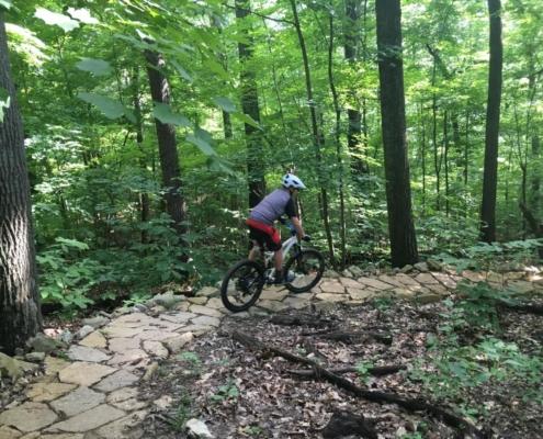 Waverly park mountain biking
